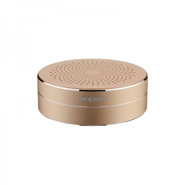 AP02-gold  bluetooth speaker
